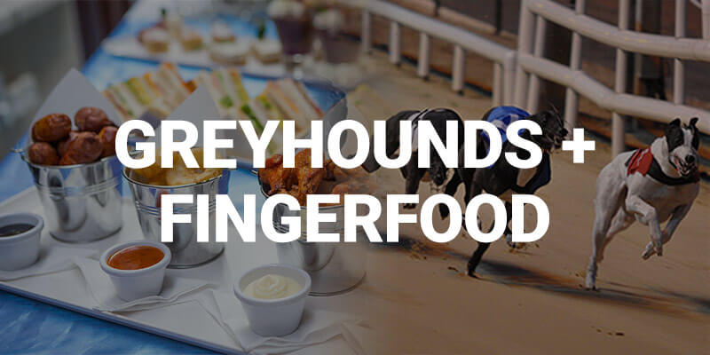 Banner for Greyhounds + finger food with images of greyhounds and a platter of finger food in the background. Hen Parties Kilkenny